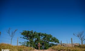 Fer e Willian | Ensaio Pré Casamento em Cabreúva SP