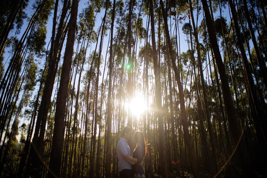 Ensaio Pré Casamento em Jundiaí (12)